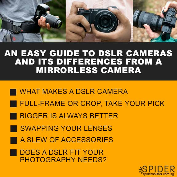 An-Easy-Guide-to-DSLR-Cameras-and-its-differences-from-a-mirrorless-camera.jpg